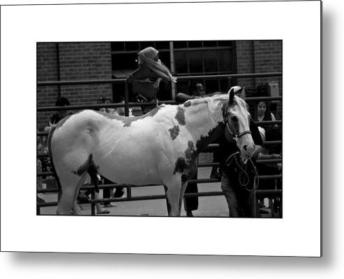 Horse Metal Print featuring the photograph Painted Horse by Filipe N Marques