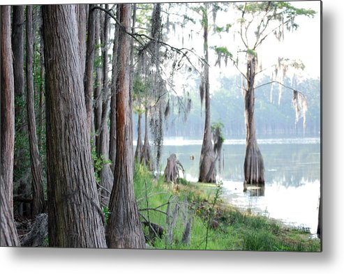 Nature Metal Print featuring the photograph Shores of Compass Lake by Peter McIntosh