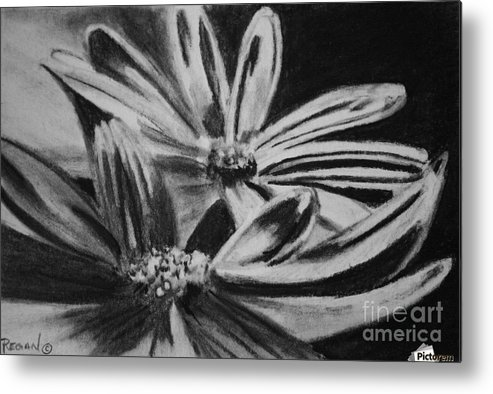 Flowers Metal Print featuring the drawing Two Flowers by Regan J Smith