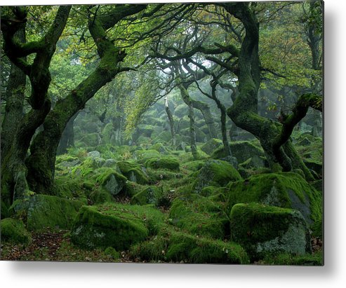 Tranquility Metal Print featuring the photograph Padley Gorge by Duncan Fawkes