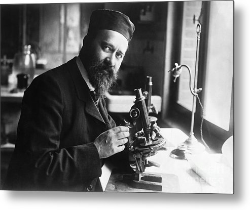 Microscope Metal Print featuring the photograph Albert Calmette Working With Microscope by Bettmann