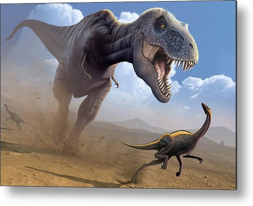 White Background Metal Print featuring the digital art Artwork Of A Tyrannosaurus Rex Hunting by Science Photo Library - Mark Garlick