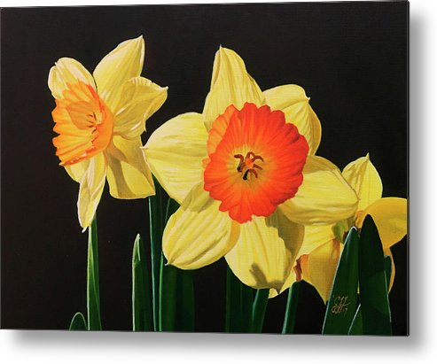 Daffodils Metal Print featuring the painting Daffodils by Gary Hernandez
