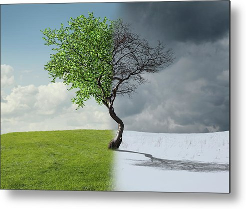 Snow Metal Print featuring the photograph Digital Illustration Of Half Winter by Chris Clor