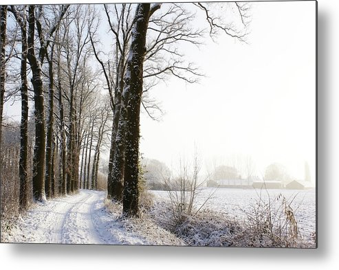 Tranquility Metal Print featuring the photograph Half Black, Half White by Bob Van Den Berg Photography