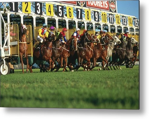 Horse Metal Print featuring the photograph Start Of Horse Race, Sydney, New South by Oliver Strewe