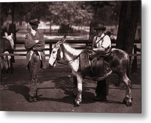 Horse Metal Print featuring the photograph Waiting For A Hire by John Thomson
