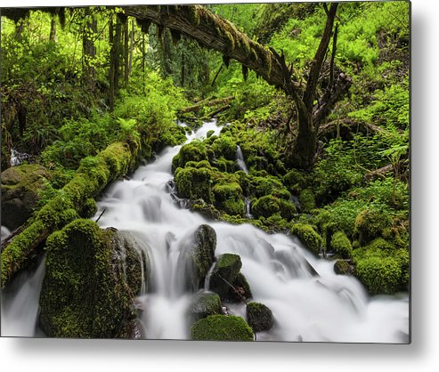 Scenics Metal Print featuring the photograph Wild Forest Waterfall Idyllic Green by Fotovoyager