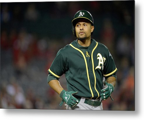 American League Baseball Metal Print featuring the photograph Coco Crisp by Harry How