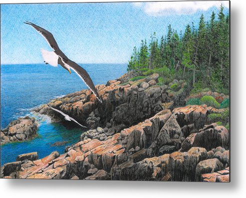 Acadia National Park Metal Print featuring the drawing Crusing Otter Point by Brent Ander