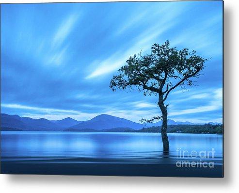 Milarrochy Bay Metal Print featuring the photograph Lone tree Milarrochy Bay by Janet Burdon