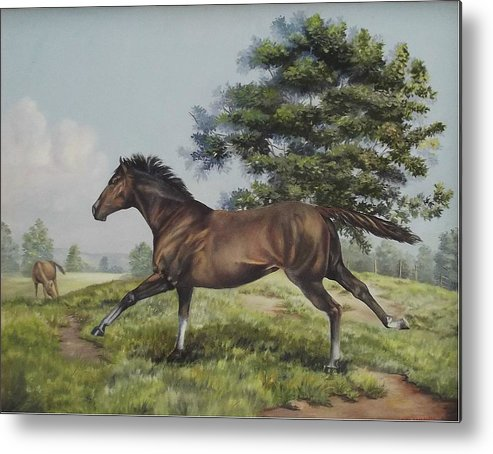 Horse In Field Metal Print featuring the painting Energy To Burn by Wanda Dansereau