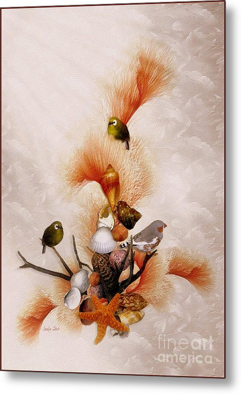 Shells Birds Seashore Tropical Coastal Peach Starfish Metal Print featuring the painting Morning Song by Carolyn Staut