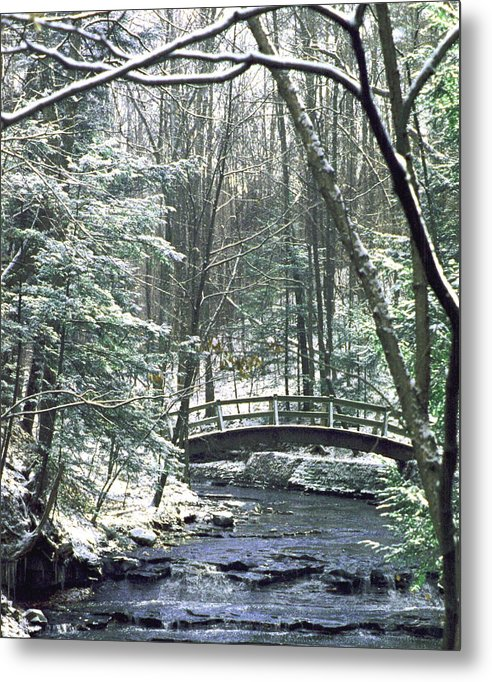 Snow Metal Print featuring the photograph 092508-1 by Mike Davis