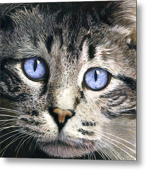Cat Metal Print featuring the painting The Eyes Have It by Ted Head