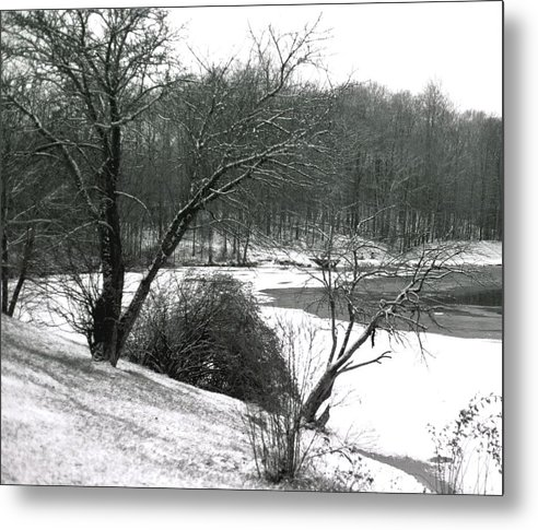 Scenic Metal Print featuring the photograph 072606-24a by Mike Davis