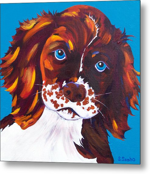 Cocker Spaniel Metal Print featuring the painting Murphy by Susan Szabo