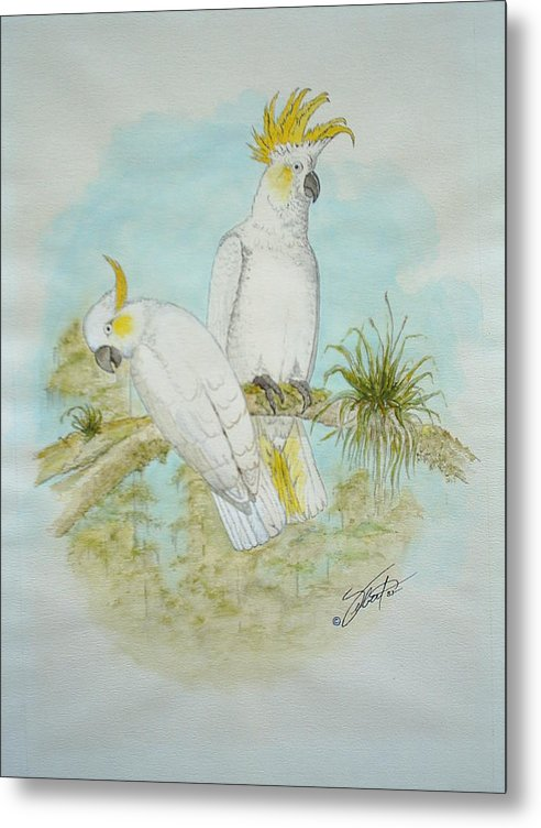 Birds Metal Print featuring the painting Cockatoos by Dennis Vebert