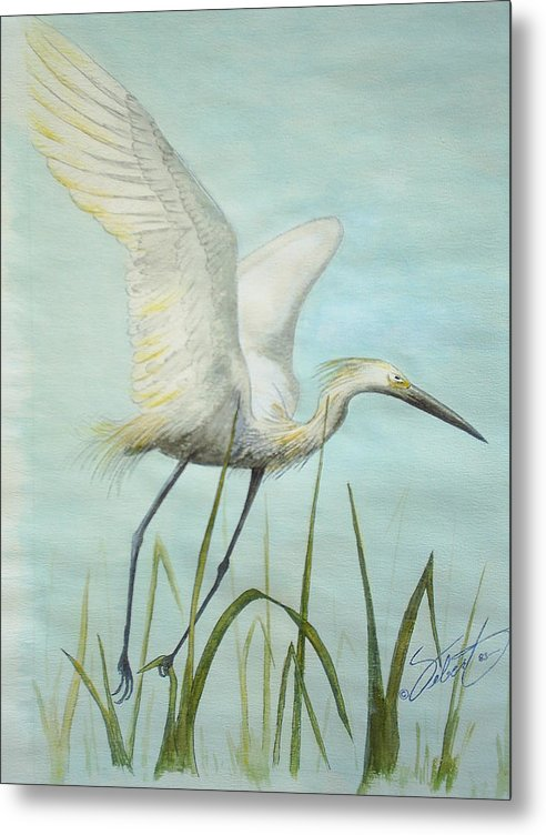 Bird Metal Print featuring the painting Egret In Flight by Dennis Vebert