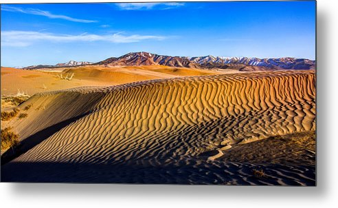 Utah Metal Print featuring the photograph Desert Lines by Chad Dutson
