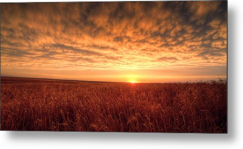 Sunset Metal Print featuring the photograph Endless Oz by Thomas Zimmerman