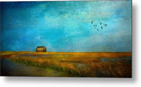 Sea Metal Print featuring the mixed media Salt Marsh by Michael Petrizzo