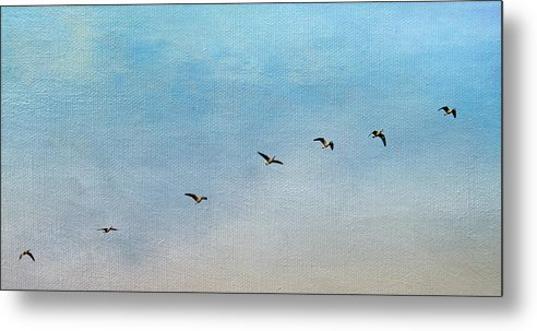 Geese Metal Print featuring the photograph Seven by Rebecca Cozart