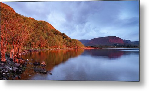 2011 Metal Print featuring the photograph Lough Mask Dawn by Niall Whelan