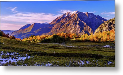 Fall Meadow Metal Print featuring the photograph Fall Meadow by Chad Dutson