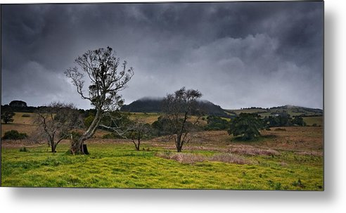 Australia Metal Print featuring the photograph High Country Winter by Dennis Gay