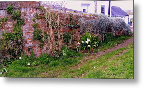 Wall Metal Print featuring the photograph Lavender Wall In England by Mindy Newman