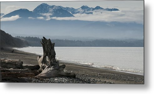 Landscape Metal Print featuring the photograph Log Under Clouds by Chad Davis