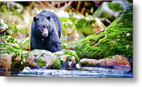 British Columbia Metal Print featuring the digital art On The Prowl by Litchfield Artworks