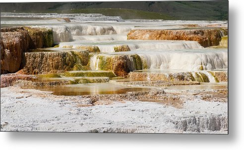 Mammoth Hot Springs Metal Print featuring the photograph Terrace Colors by Chad Davis