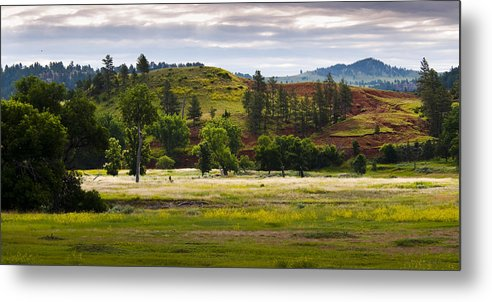 Landscape Metal Print featuring the photograph Wyoming Valley by Chad Davis