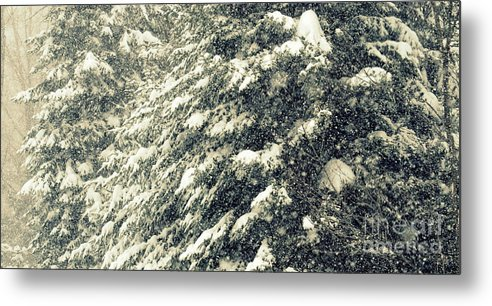Snow Metal Print featuring the photograph Low Visablility by Jaunine Roberts