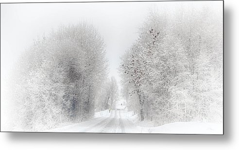 Road Metal Print featuring the photograph My Way Home by Laila Karlsen