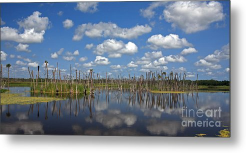 Orlando Metal Print featuring the photograph Orlando Wetlands Cloudscape 3 by Mike Reid