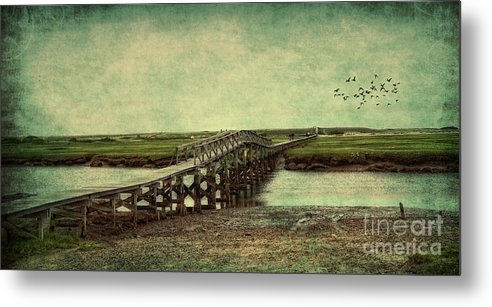 Cape Cod Metal Print featuring the photograph Marshland by Gina Cormier