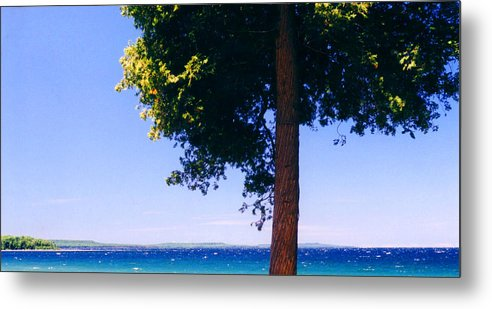 Landscape Metal Print featuring the photograph Tree By The Lake 3 by Lyle Crump