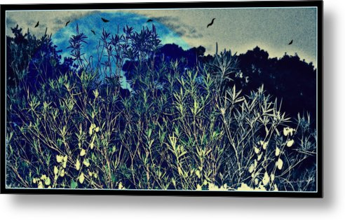 Landscape Metal Print featuring the mixed media Back Yard Sky by YoMamaBird Rhonda