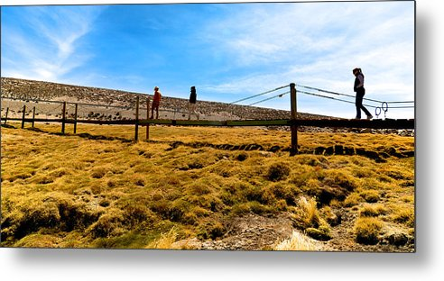Lauca Metal Print featuring the photograph Lauca National Park by Andre Distel
