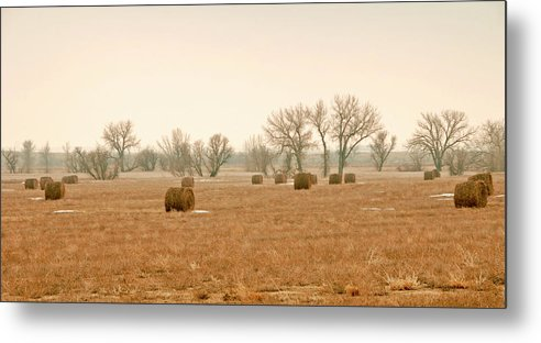 Hay Photography. Fine Art Hay Photography. Hay Greeting Cards. Eraly Morning Hay Fields. Colorado Hay Fields. Hay Fields In Colorado. January Hay Faields. Wall Art Hay Fields. Grass. Skys. Fields. Mow Fields. Farm Fileds Of Hay. Metal Print featuring the photograph Field Of Hay by James Steele