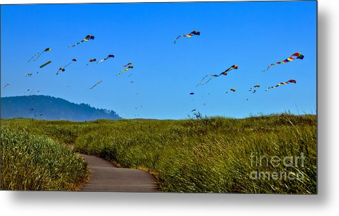 Haybales Metal Print featuring the photograph Kites by Robert Bales