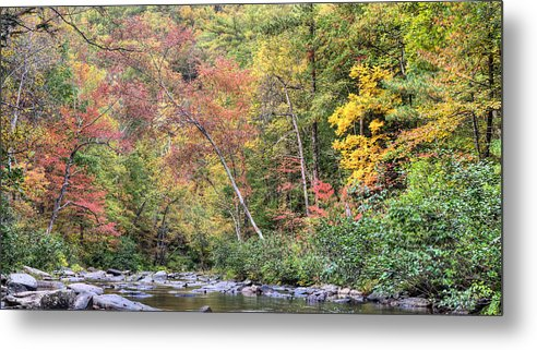 Mountain Creek Stream Fall Autumn Shenandoah George Washington National Forest Mountains Blueridge Blue Ridge Front Royal Virginia Va National Park Haymarket Valley Vally Appalachian Appalachia Gw Forrest Rustic Rural Country Metal Print featuring the photograph Gateway To Fall by JC Findley
