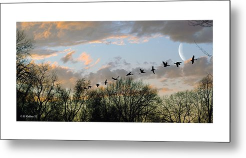 2d Metal Print featuring the photograph Winter Sunset Silhouette by Brian Wallace