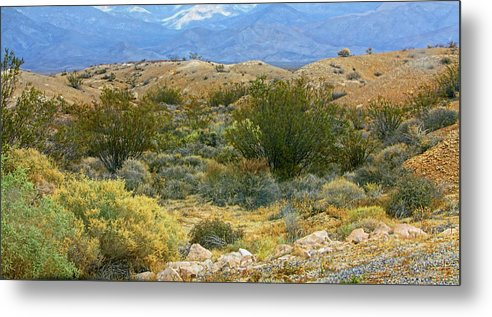 Nevada Metal Print featuring the photograph Desert Gold by Linda Phelps