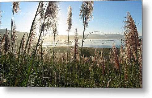 Harbor Metal Print featuring the photograph Princeton Harbor. California by Bob Bennett