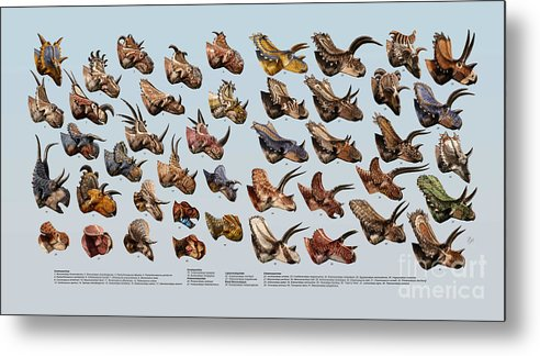 Dinosaur Metal Print featuring the digital art Ceratopsian Cornucopia by Julius Csotonyi