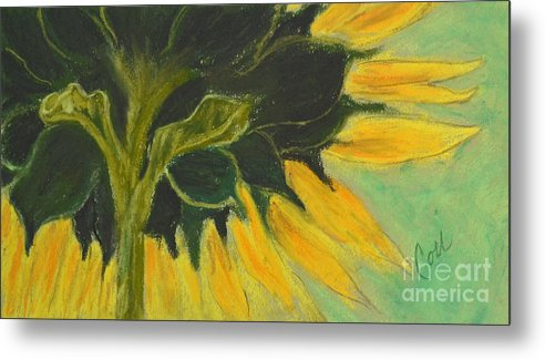 Sunflower Metal Print featuring the drawing Sunny Side Up by Cori Solomon